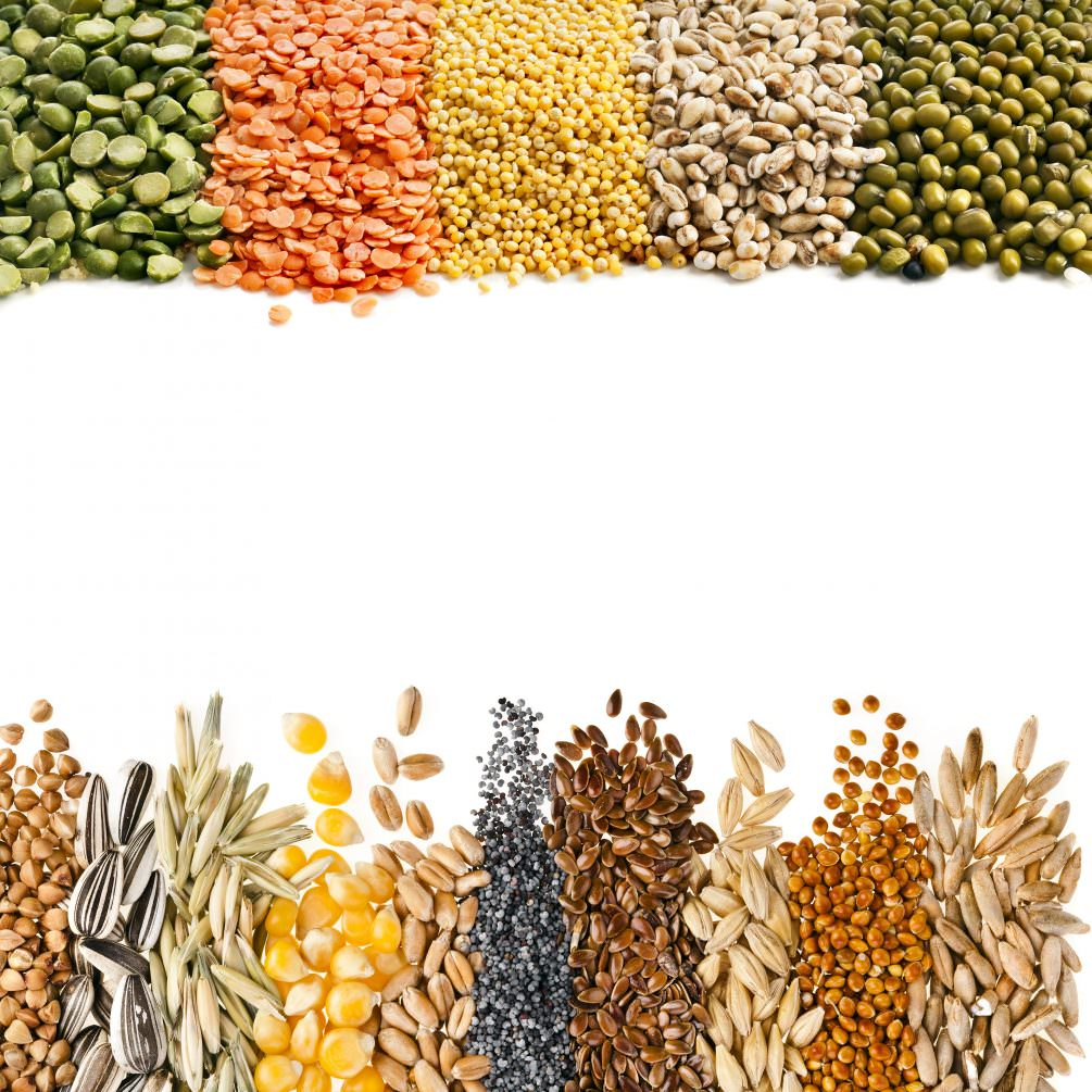 Grains for Cancer